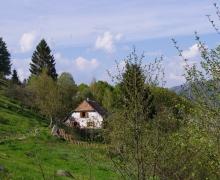 Bruckenwald auberge