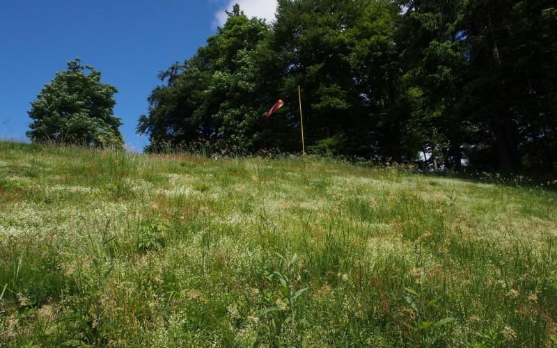 Chaumes du Col des Bagenelles