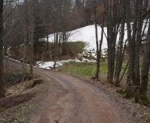 Dernière neige de printemps 1