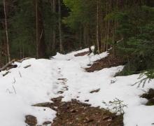 Dernière neige de printemps 3