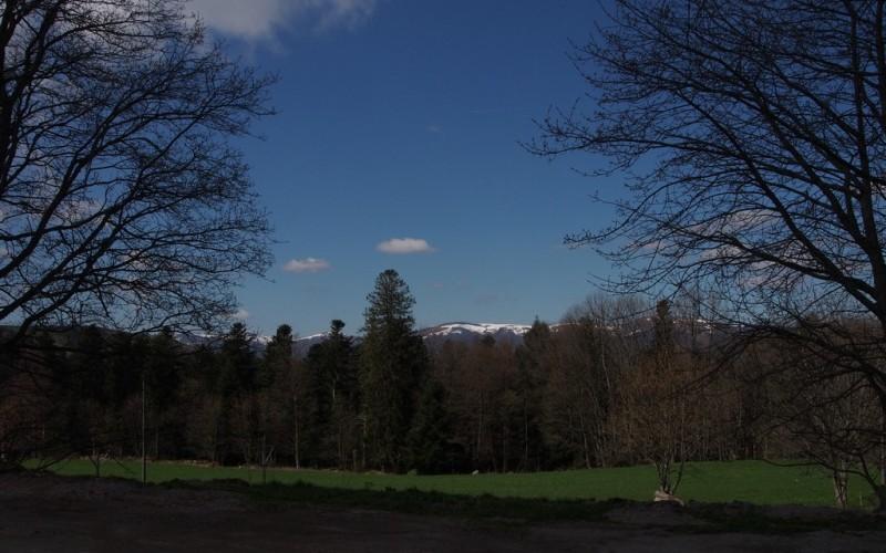 La fin du printemps dans les Vosges