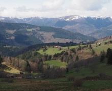Le massif du Hohneck et plus encore
