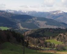 Rainkopf & Rothenbachkopf
