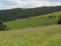Le Salzbach au loin