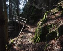 Petite passerelle sur le sentier des Roches