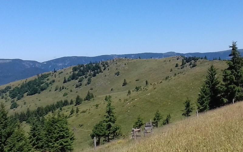 Versant nord du Steinberg