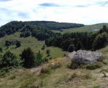 Le Strohberg