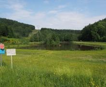 Le lac du col de Steige