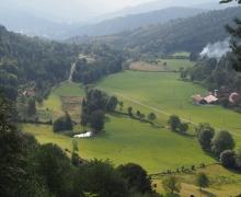 Le joli vallon de Rammersbach (Fellering)