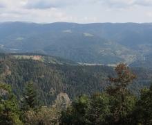 Les Vosges vosgiennes