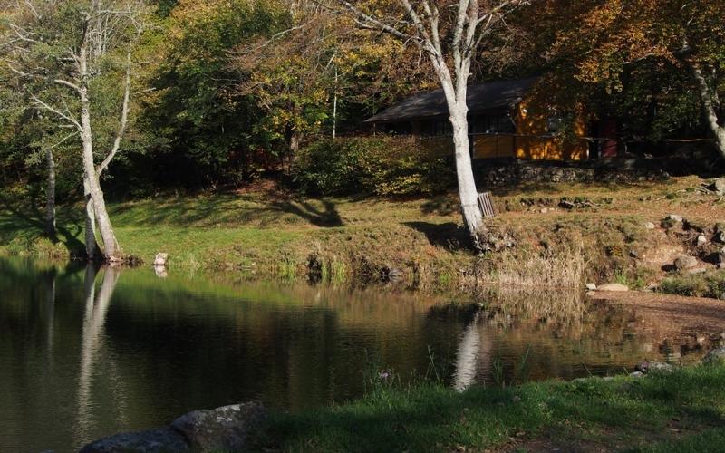 Le Lachtelweiher en automne