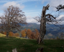 La vallée de la Doller