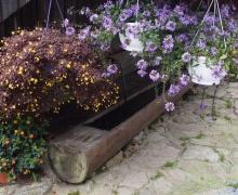 Un accueil floral
