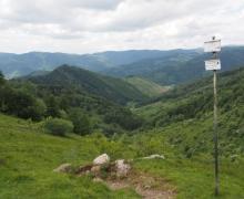 Le vallon de Rimbach/Masevaux