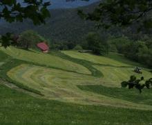 Agriculture de montagne au dessus du Christelsgut