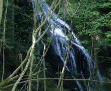 La cascade du Wagenstallbach2