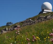 Flore et radar