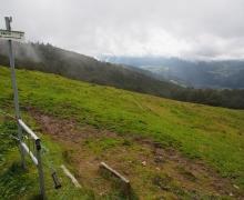 Descente vers la vallée de Thann
