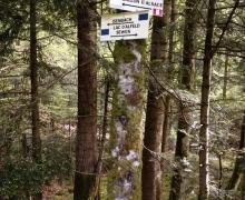 Au dessus de Isenbach, la croisée des chemins