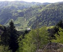 Au loin la ferme du Petit Langenberg