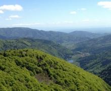 Le Neuberg et au loin le lac de Sewen