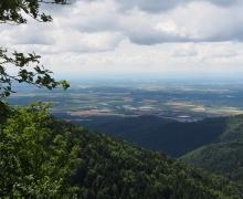 La plaine d'Alsace, Mulhouse au fond