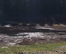 Terres humides