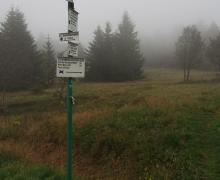 Carrefour de la chaume du Lauchenkopf - 1248m (sous la brume)
