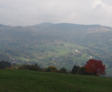 La vallée de Munster
