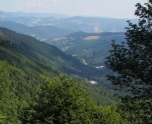 Vallée de Metzeral