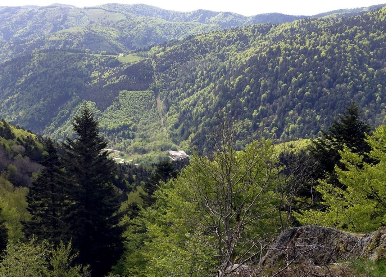 Au loin, le Petit Langenberg