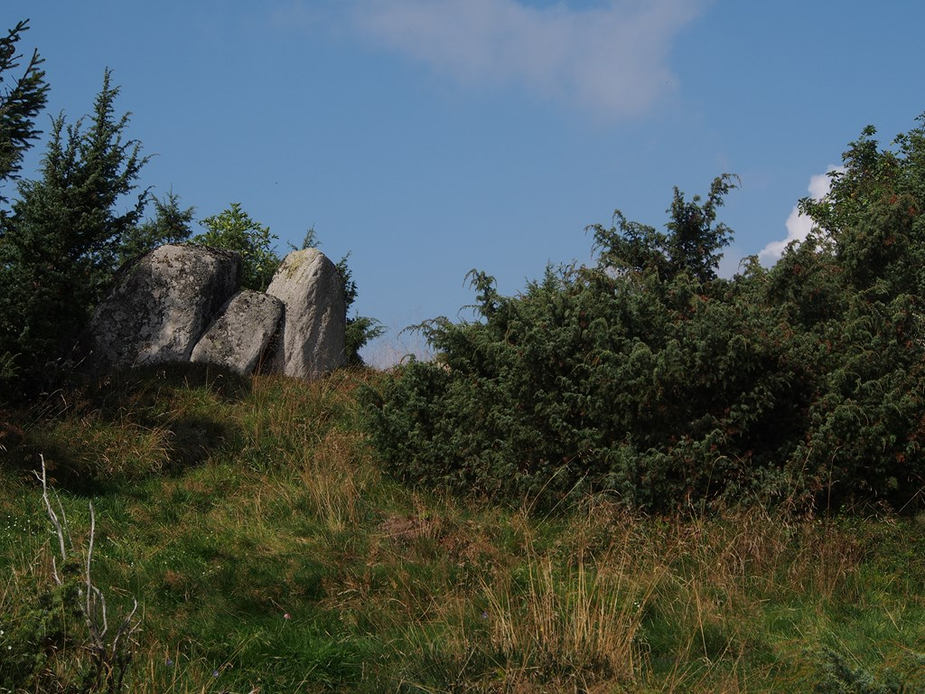 Les petits dolmens du Steinkopf