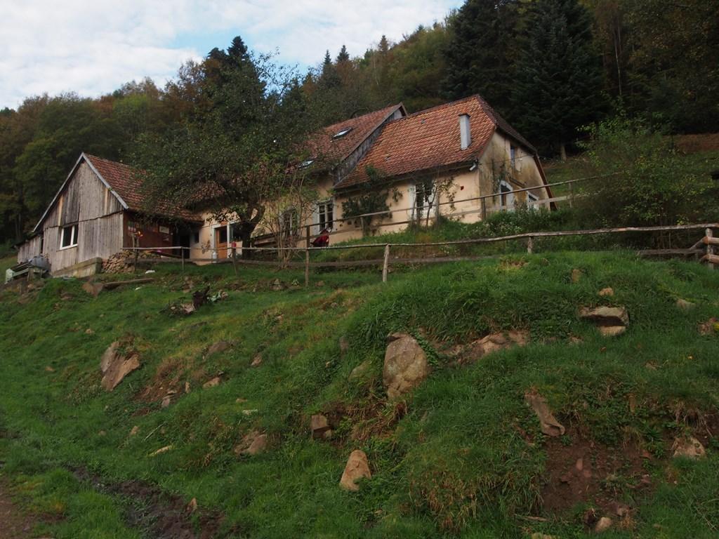 La ferme auberge de l'Entzenbach