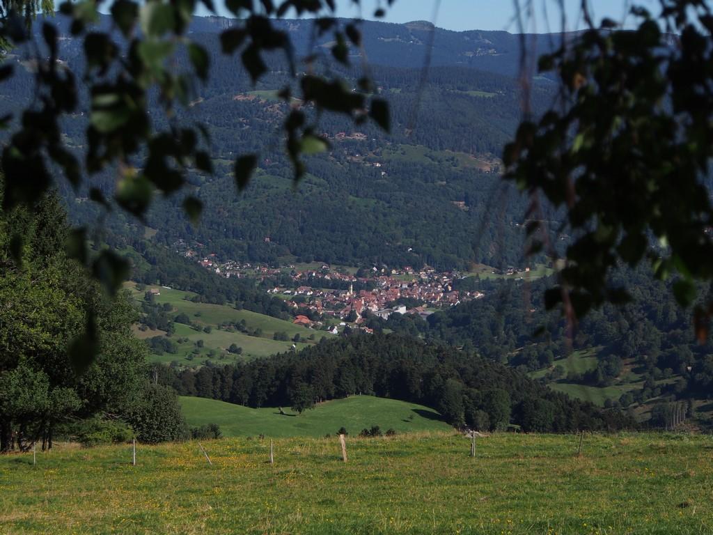 Luttenbach
