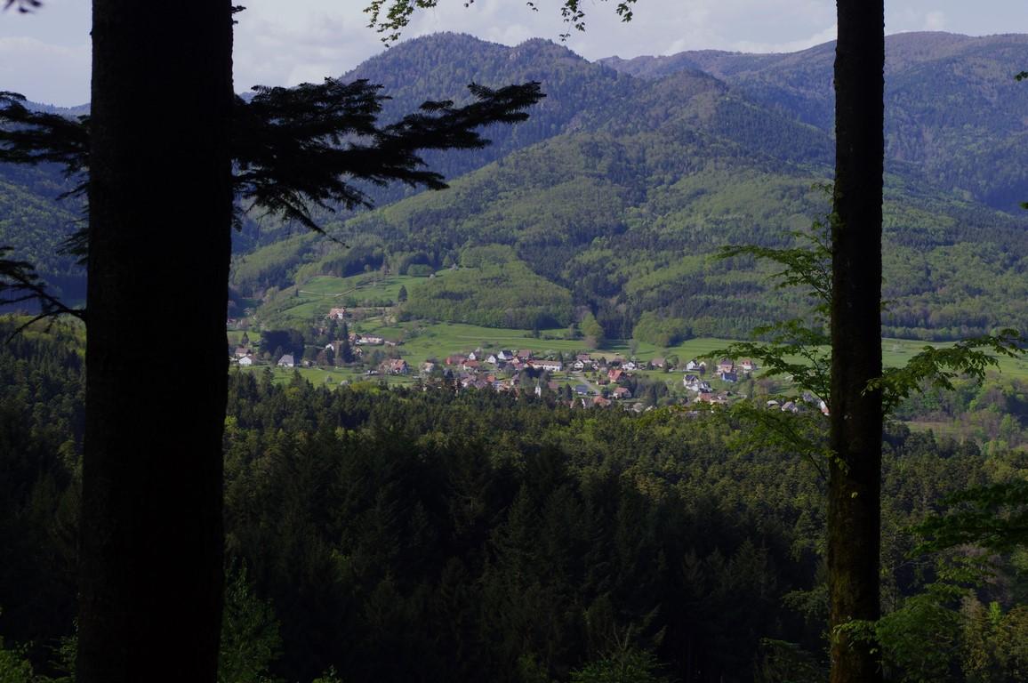 Bruckenwald retour
