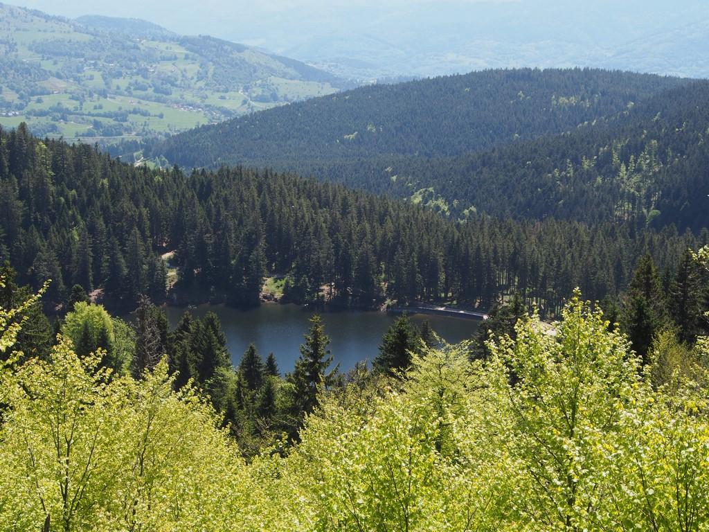 Lac Vert ou de Soultzeren