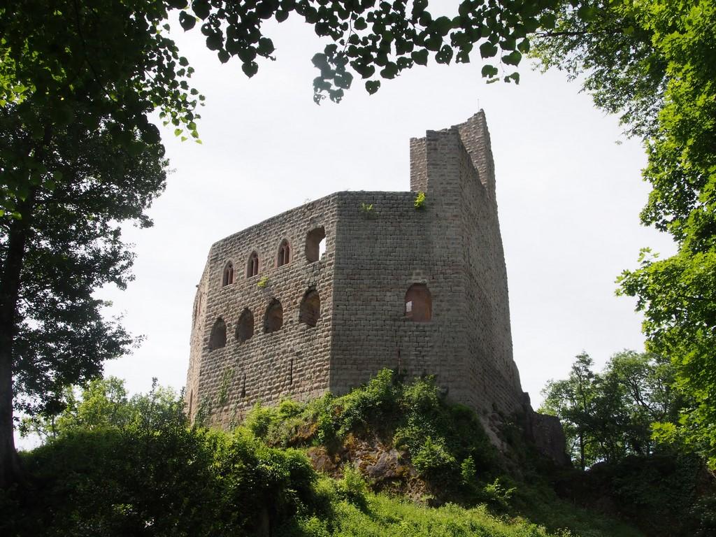 Ruines du Spesbourg