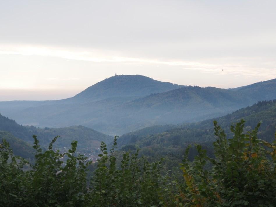 Haut Koenisgsbourg et Plaine d'Alsace