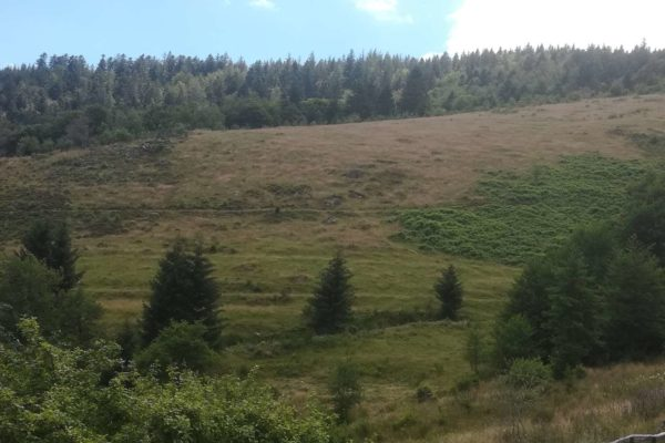 Vue depuis le Bruckenwald 3
