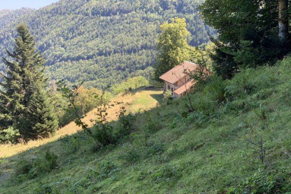 La ferme du Garzon Vert (2)