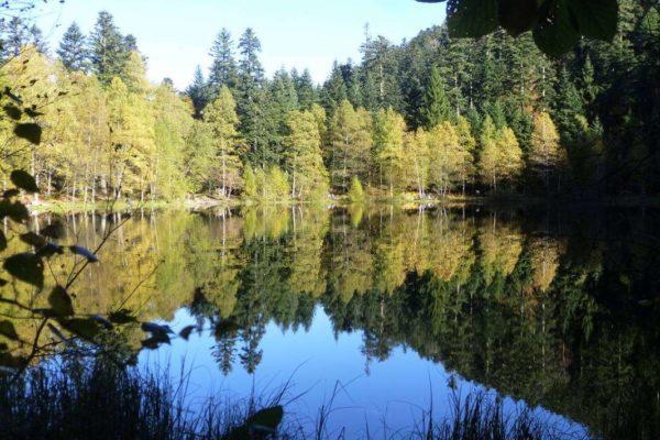 Joli lac de la Maix1