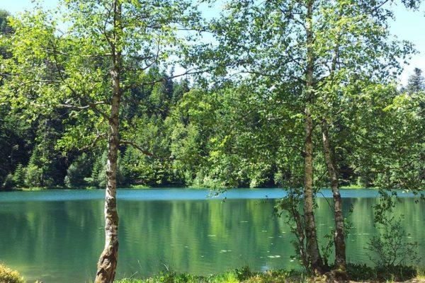 Joli lac de la Maix2
