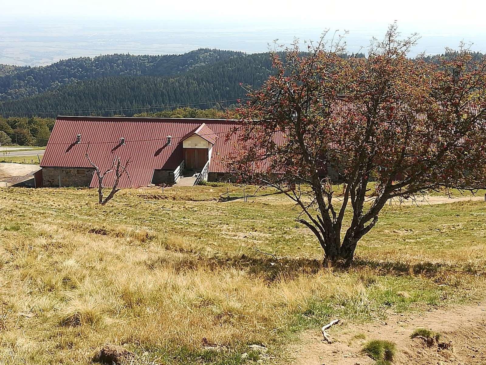 La ferme auberge du Grand Ballon, vue amont