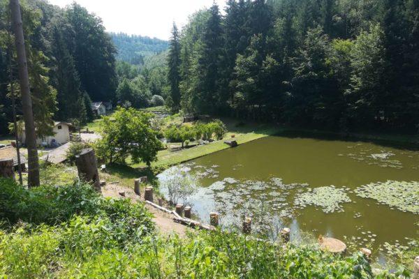 L'étang de l'Imsthal